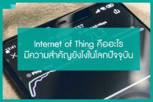 Internet of Thing คืออะไร มีอะไรบ้าง มีความสำคัญยังไงในโลกปัจจุบัน